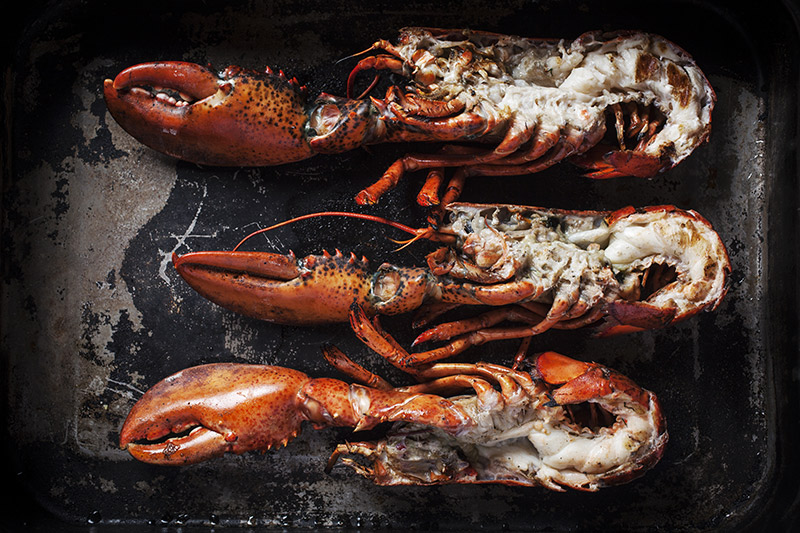 Once the lobsters are done, the shell and claws should be bright red, the flesh should be firm and opaque and you should see apparent grill lines.